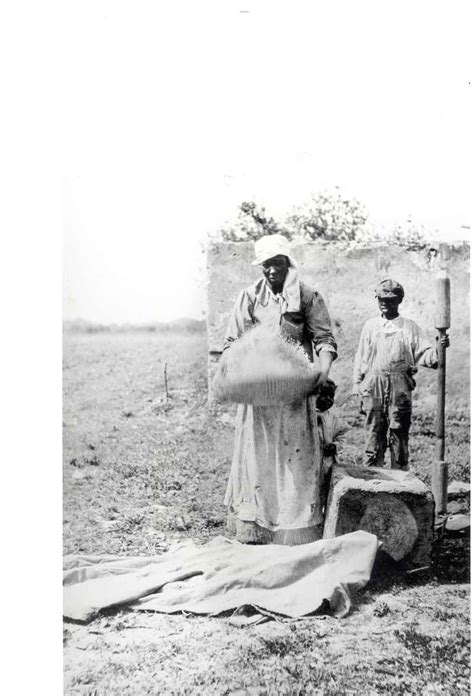 LOWCOUNTRY RICE SLAVERY | [Drew Gilpin Faust's most recent